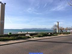 170211_Th_Mallorca__691325